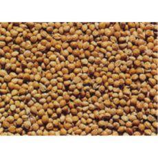 Senegalhirse Inhalt 25 kg