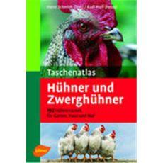 Hühner und Zwerghühner, Schmidt/Proll - Verlag Ulmer