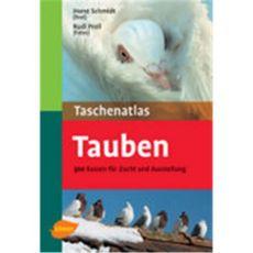 Tauben, Schmidt/Proll - Verlag Ulmer