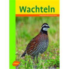 Wachteln, Bernhardt/Kühne - Verlag Ulmer