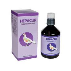 easyyem Hepacur Leberstoffwechsel Inhalt 500 ml