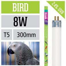 Arcadia Bird Lamp  8 Watt 30 cm