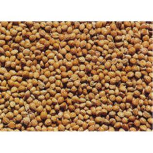 Senegalhirse Inhalt 5 kg