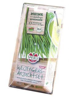 Sperli Weizengras Bio-Starter-Set