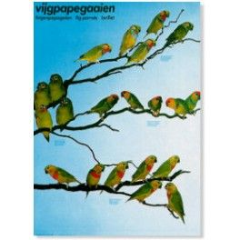 Poster Feigenpapagei