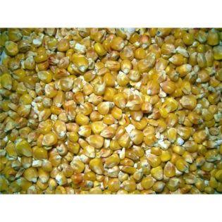 Mais, getrocknet aus Frankreich Inhalt 25 kg