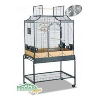 Montana Cages Madeira III - Antik