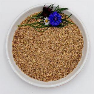 Bird-Box Knaulgras Inhalt 1 kg